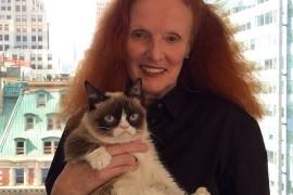 Grumpy Cat в гостях у Vogue